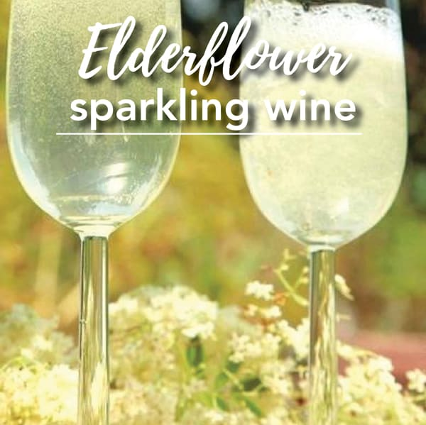 Elderflower sparkling wine workshop at Ashton Park