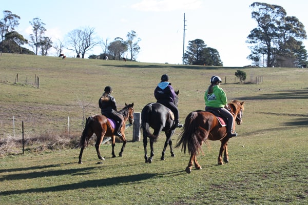 School holiday horse riding group lesson