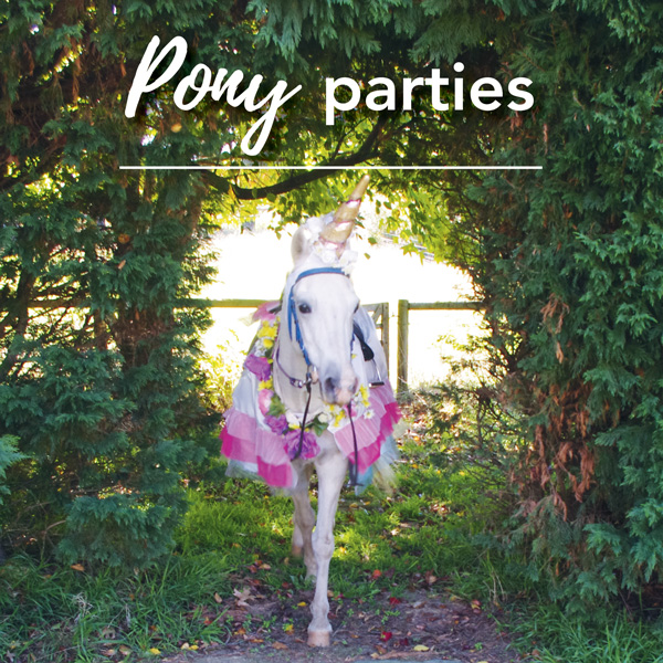 Pony parties at Ashton Park Moss Vale