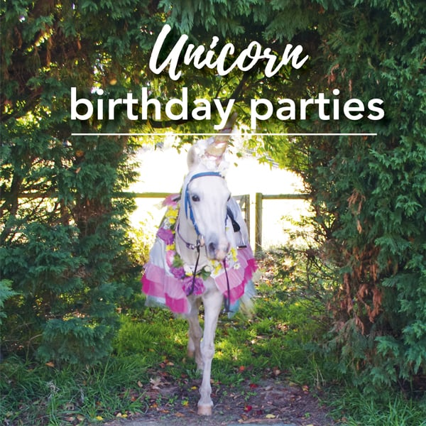 Unicorn pony party at Ashton Park