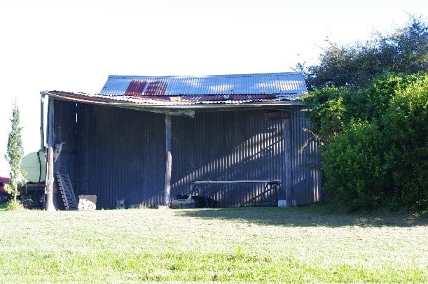 The shed that became the Lemonaia at Ashton Park